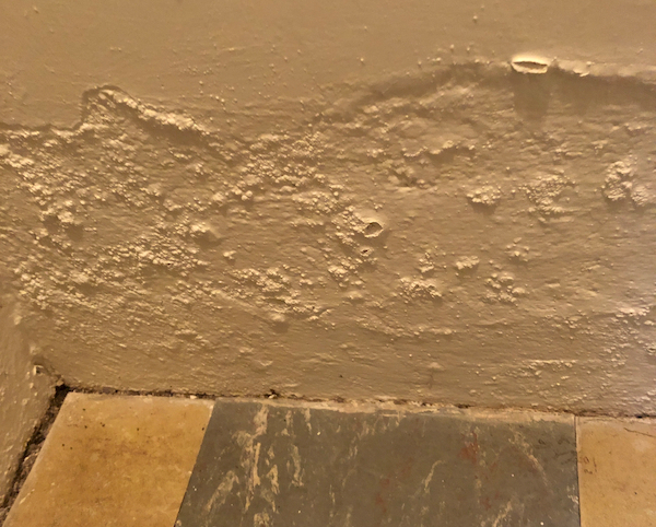 rising damp signs