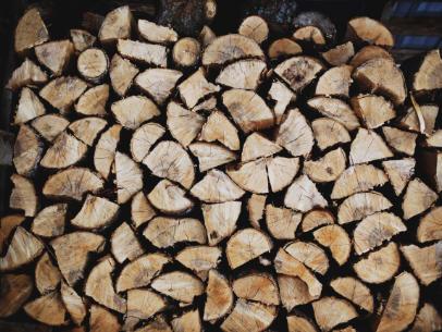 woodpiles termites