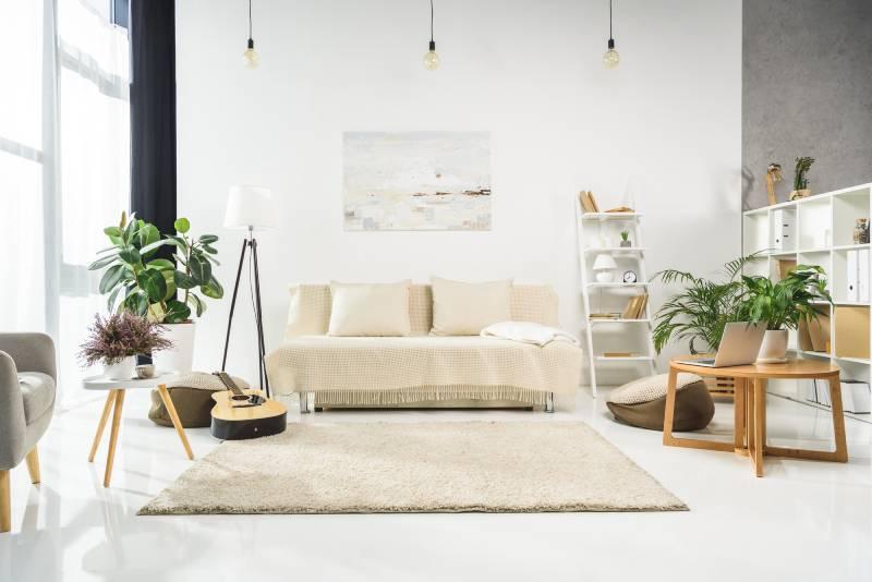fresh paint living room